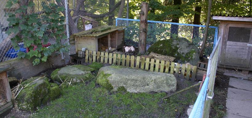 Kleintiere Tierferienheim